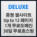 Picture of Deluxe 웹사이트제작