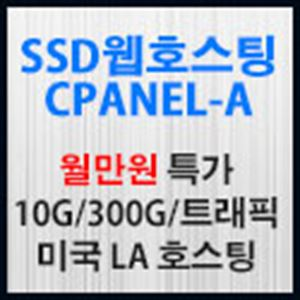 Picture of SSD미국웹호스팅-A