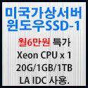 Picture of 미국가상서버 윈도우 SSD-1