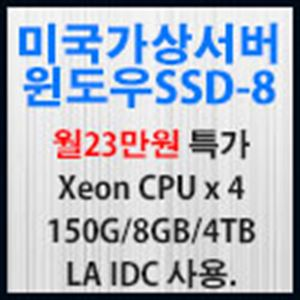 Picture of 미국가상서버 윈도우 SSD-8