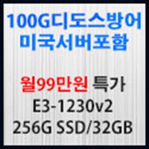Picture of 100G  디도스방어 서버포함 월99만원 특가