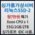 Picture of 싱가포르 가상서버 리눅스 SSD-2